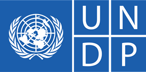 UNDP announced 10 intern positions in remote mode for Russian citizens
