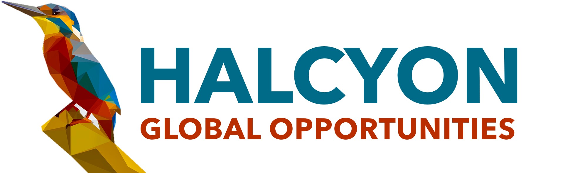 Part-time Intern in Asset Management team at Halcyon Global Opportunities (formerly SPRING) - March 2021, 3 months